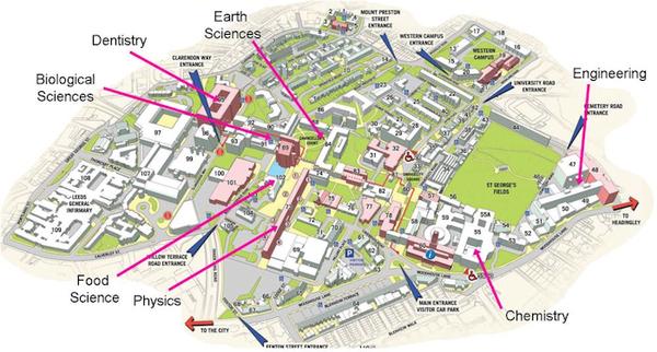 6. Map